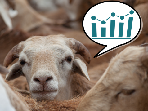 A new publication that explores the data behind popular livestock figures