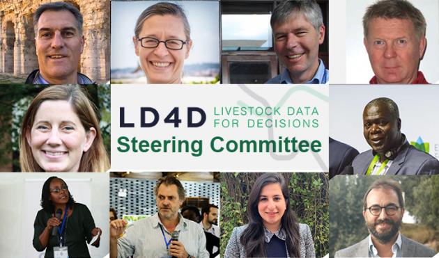 Meet the Steering Committee